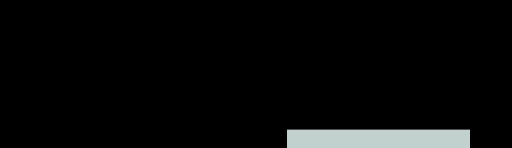 Logo Sinn und Gesellschaft