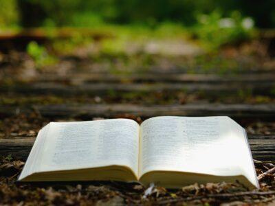Sucht neue Worte, das Wort zu verkünden